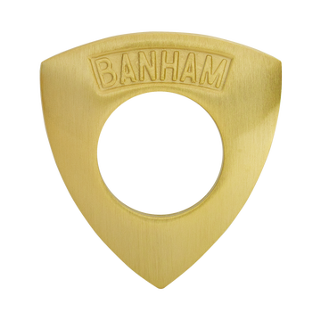 Banham Door Rose Satin Brass